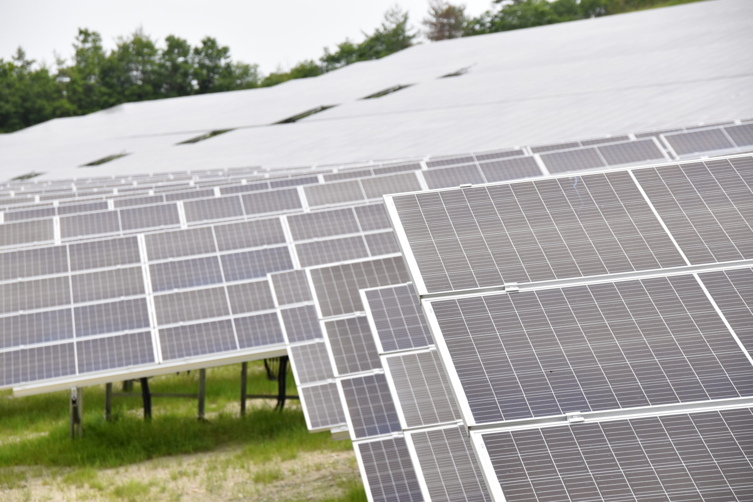 【サステナブルスイッチ】中古太陽光発電所(セカンダリー)市場の現状